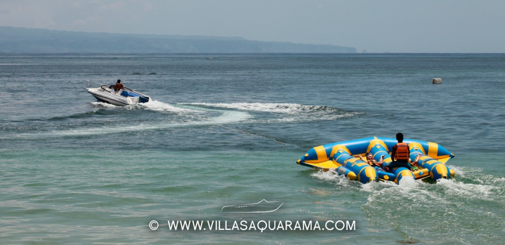 Fly fish in Sanur Bali is perfect for family
