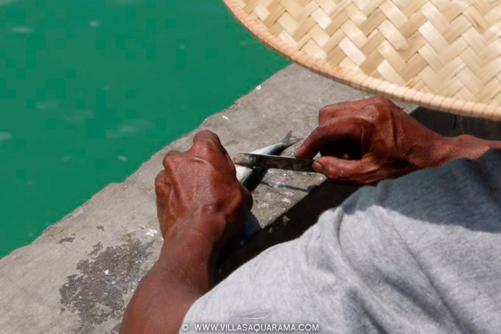 jimbaran-fishmarket-in-bali-fisherman-villasaquarama