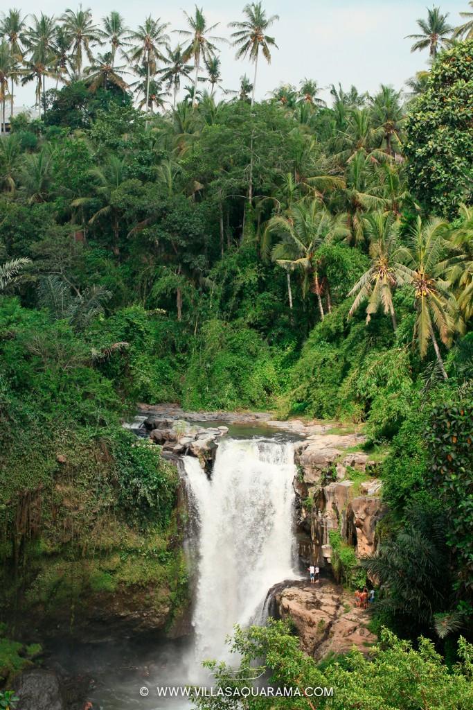 tegenungan-waterfall-villas-aquarama-rent-bali-02