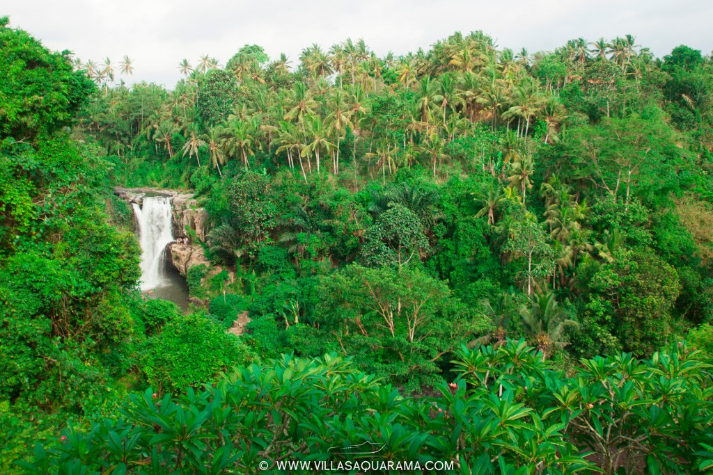 tegenungan waterfall - villas-aquarama-rent-bali-05